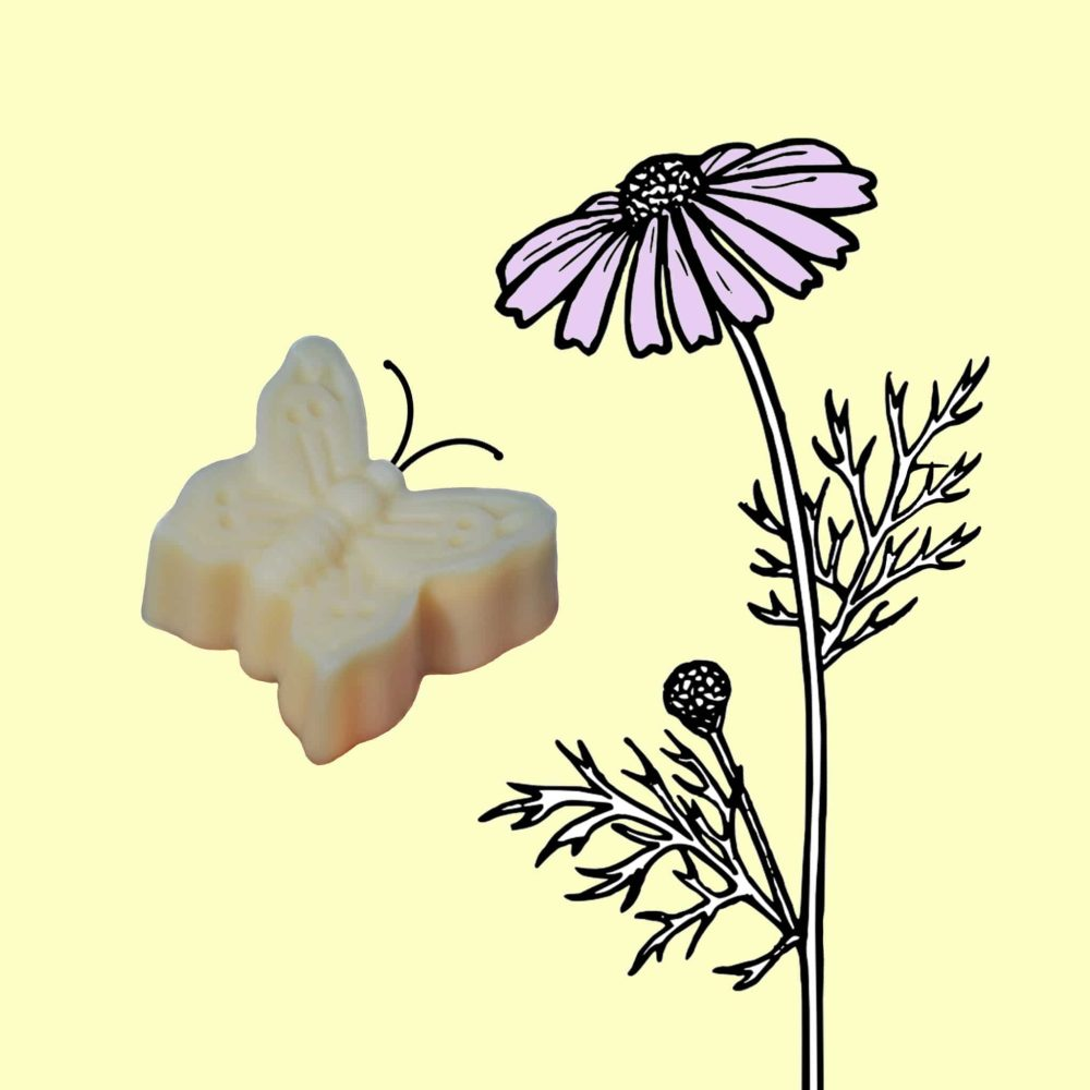 """˂img src=""""Jemné přírodní mýdlo čistě rostlinné-motýlek Venoušek.jpg""""alt=""""jemné přírodní mýdlo čistě rostlinné ve tvaru motýlka vhodné i pro miminka""""˃"""